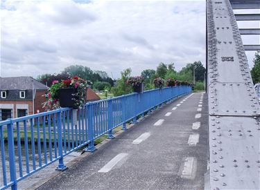Brug 9 in Barrier in de bloemetjes - Lommel