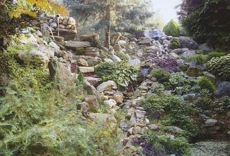 meer dan 1000 afbeeldingen over tuin stenen op pinterest