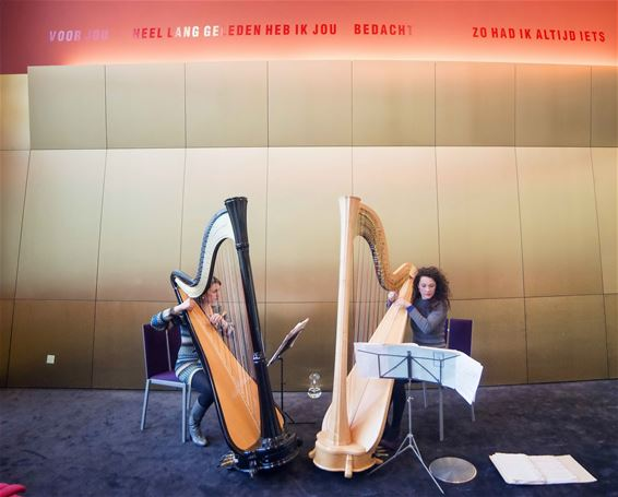 'Seduced by Harps' alweer enorm succes - Lommel