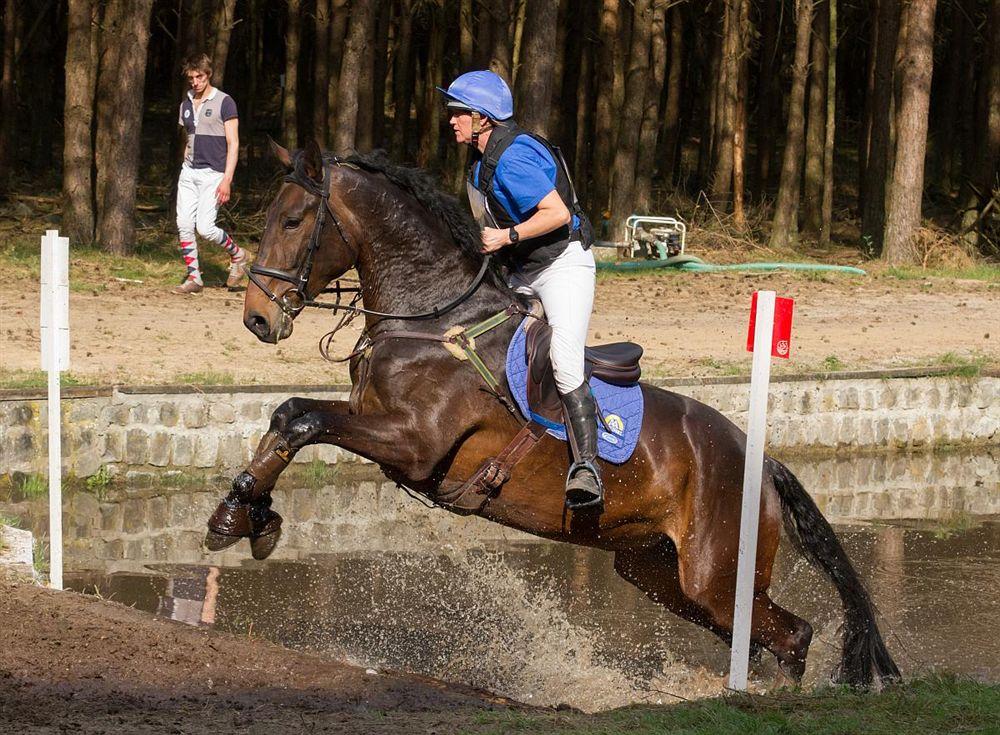 Pelt 600 Paarden In Eventing In Holheide Internetgazet